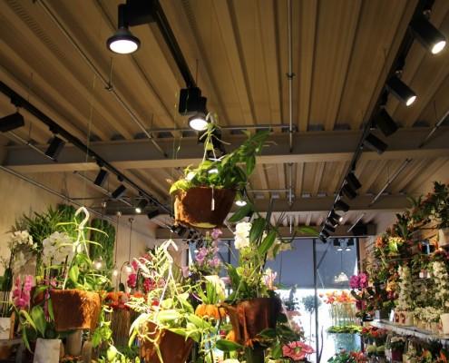 luminaires-symphonie-florale